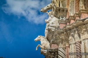 Jak przegrać zFlorencją. </br>Katedra wSienie   Włochy